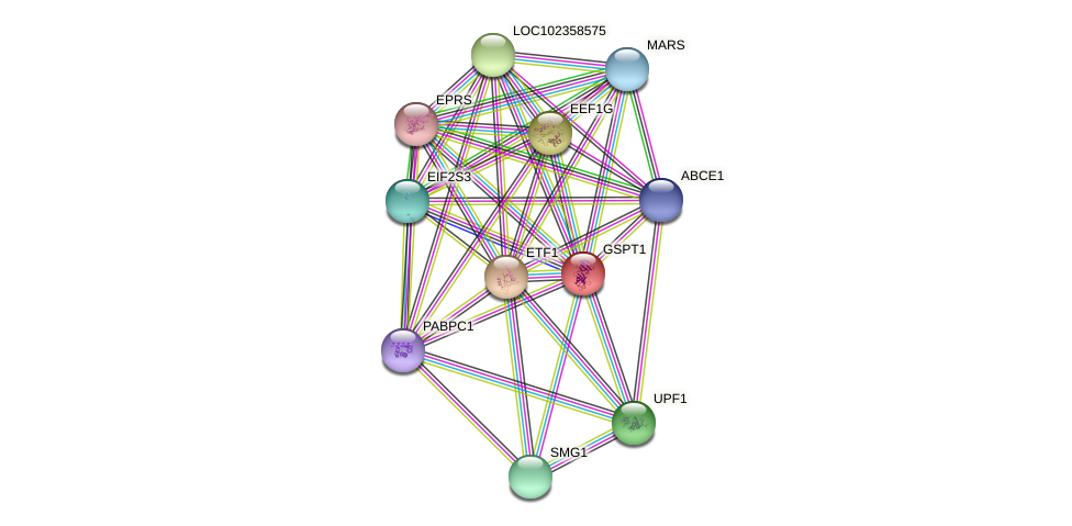 ENSLACG00000001700 protein (Latimeria chalumnae) - STRING interaction network