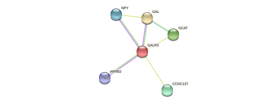 GALR3 protein (Latimeria chalumnae) - STRING interaction network