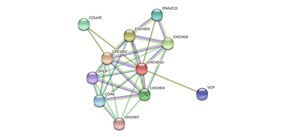 CHCHD10 protein (Latimeria chalumnae) - STRING interaction network