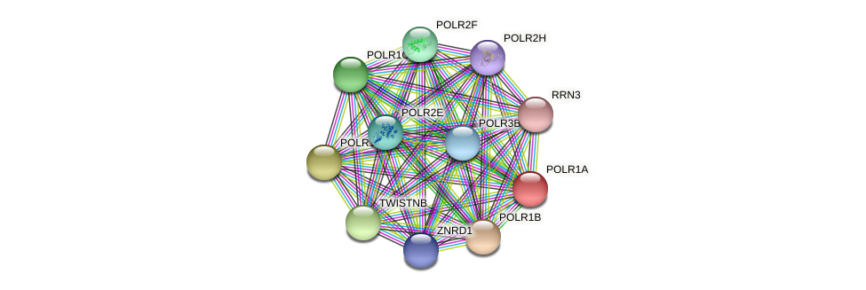 ENSLACG00000002247 protein (Latimeria chalumnae) - STRING interaction network