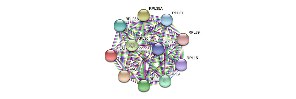 ENSLACG00000002787 protein (Latimeria chalumnae) - STRING interaction network