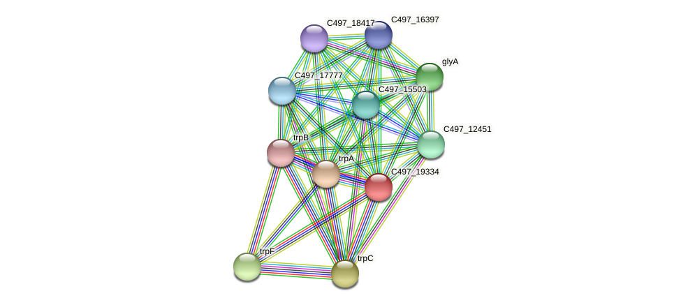 C497_19334 protein (Halalkalicoccus jeotgali) - STRING interaction network