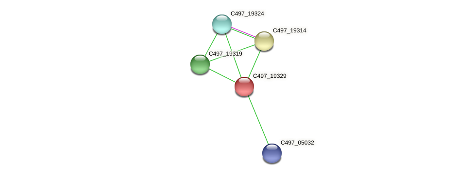 C497_19329 protein (Halalkalicoccus jeotgali) - STRING interaction network