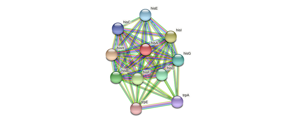 hisA protein (Halalkalicoccus jeotgali) - STRING interaction network