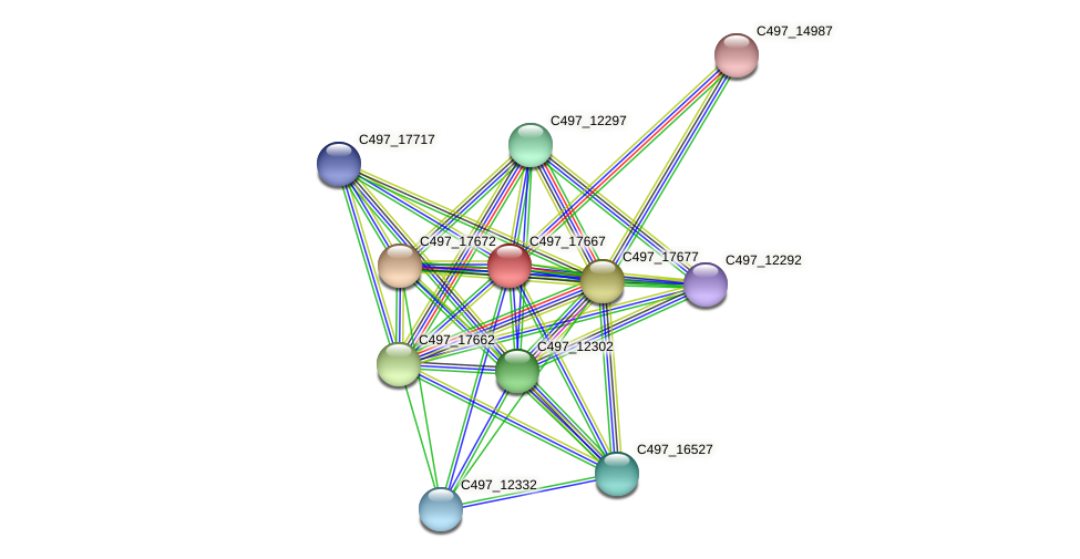C497_17667 protein (Halalkalicoccus jeotgali) - STRING interaction network