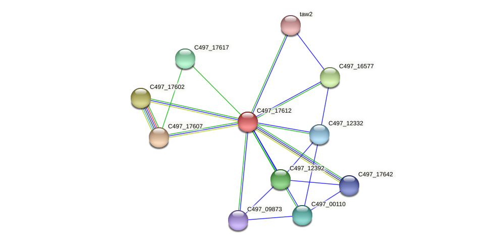 C497_17612 protein (Halalkalicoccus jeotgali) - STRING interaction network