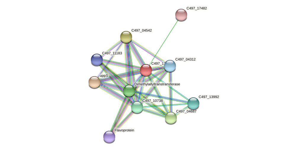 C497_17477 protein (Halalkalicoccus jeotgali) - STRING interaction network