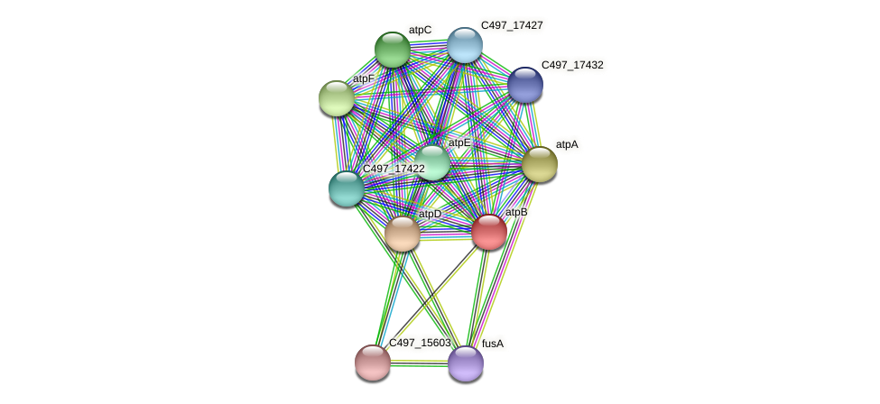 atpB protein (Halalkalicoccus jeotgali) - STRING interaction network