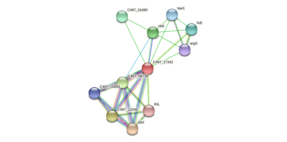 C497_17342 protein (Halalkalicoccus jeotgali) - STRING interaction network