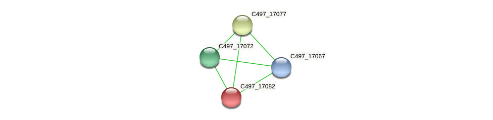 C497_17082 protein (Halalkalicoccus jeotgali) - STRING interaction network
