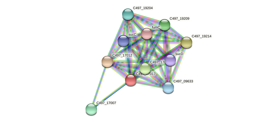 C497_17017 protein (Halalkalicoccus jeotgali) - STRING interaction network