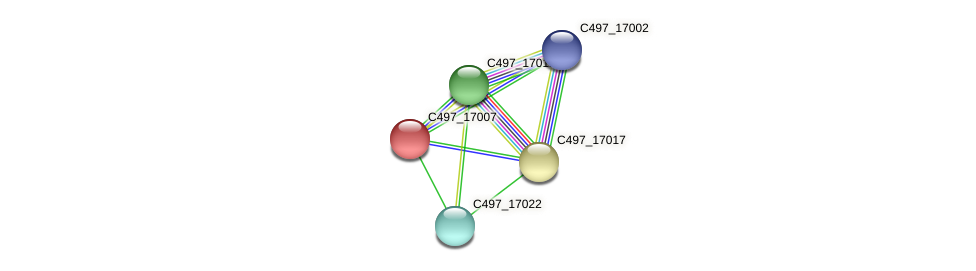 C497_17007 protein (Halalkalicoccus jeotgali) - STRING interaction network