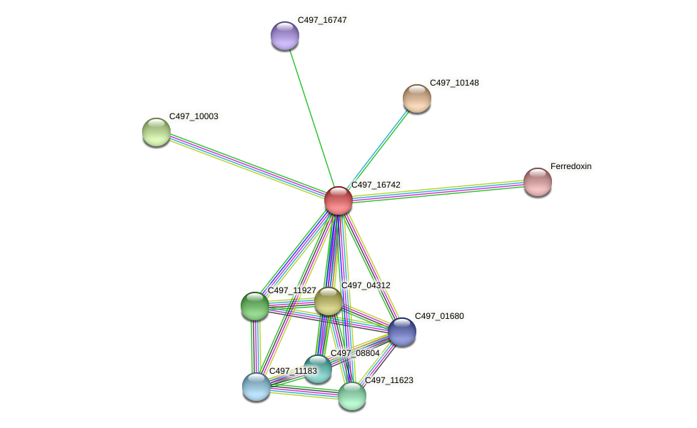 C497_16742 protein (Halalkalicoccus jeotgali) - STRING interaction network