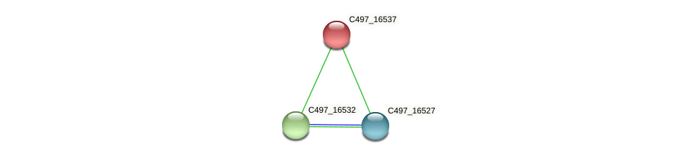 C497_16537 protein (Halalkalicoccus jeotgali) - STRING interaction network