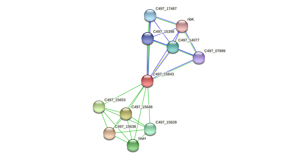 C497_15643 protein (Halalkalicoccus jeotgali) - STRING interaction network