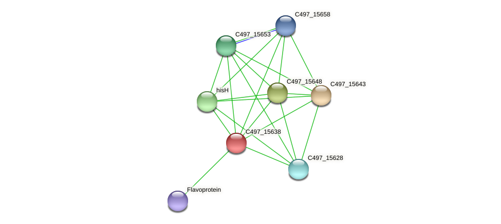 C497_15638 protein (Halalkalicoccus jeotgali) - STRING interaction network
