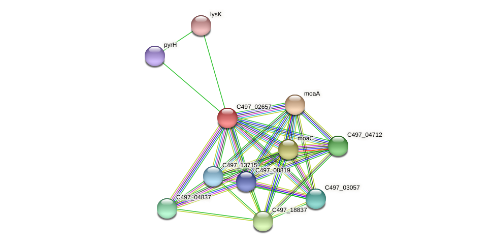 C497_02657 protein (Halalkalicoccus jeotgali) - STRING interaction network