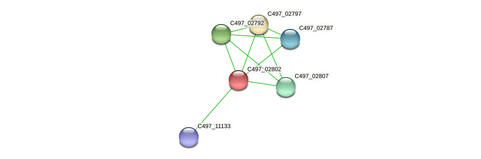 C497_02802 protein (Halalkalicoccus jeotgali) - STRING interaction network