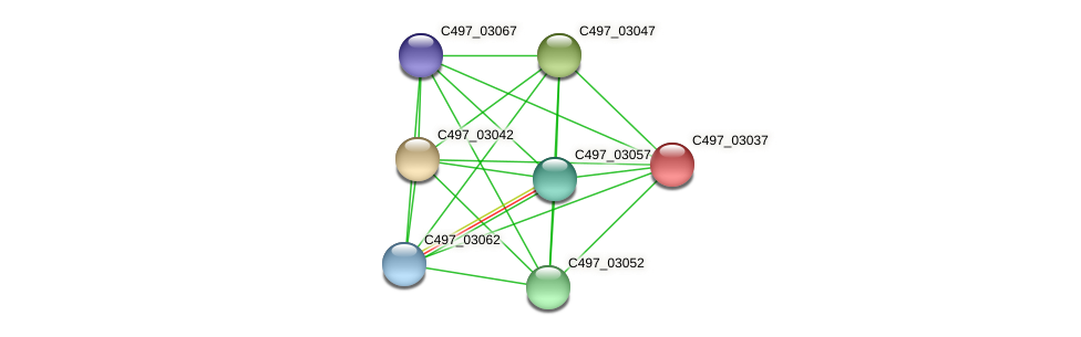 C497_03037 protein (Halalkalicoccus jeotgali) - STRING interaction network