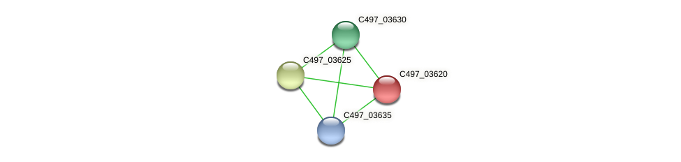 C497_03620 protein (Halalkalicoccus jeotgali) - STRING interaction network