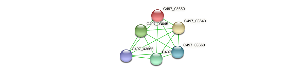C497_03650 protein (Halalkalicoccus jeotgali) - STRING interaction network