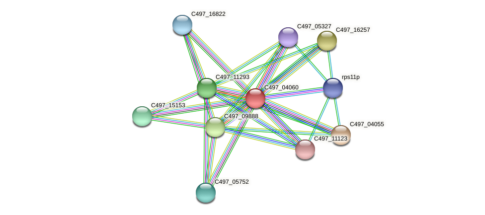 C497_04060 protein (Halalkalicoccus jeotgali) - STRING interaction network