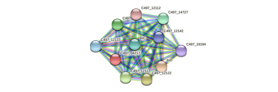 C497_04217 protein (Halalkalicoccus jeotgali) - STRING interaction network