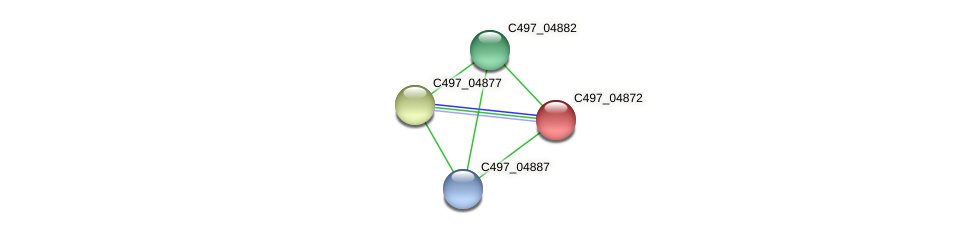 C497_04872 protein (Halalkalicoccus jeotgali) - STRING interaction network