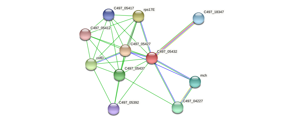 C497_05432 protein (Halalkalicoccus jeotgali) - STRING interaction network