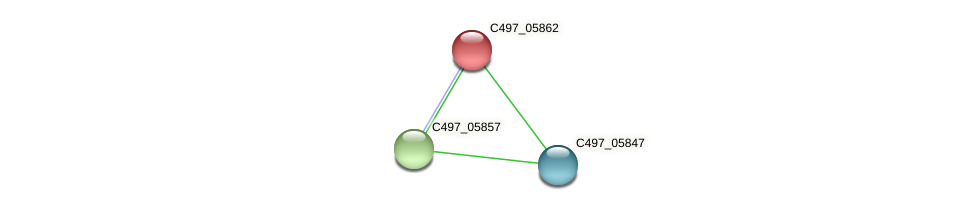 C497_05862 protein (Halalkalicoccus jeotgali) - STRING interaction network