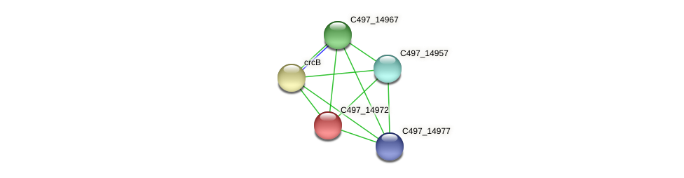 C497_14972 protein (Halalkalicoccus jeotgali) - STRING interaction network