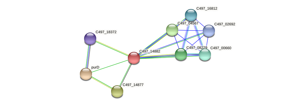 C497_14882 protein (Halalkalicoccus jeotgali) - STRING interaction network