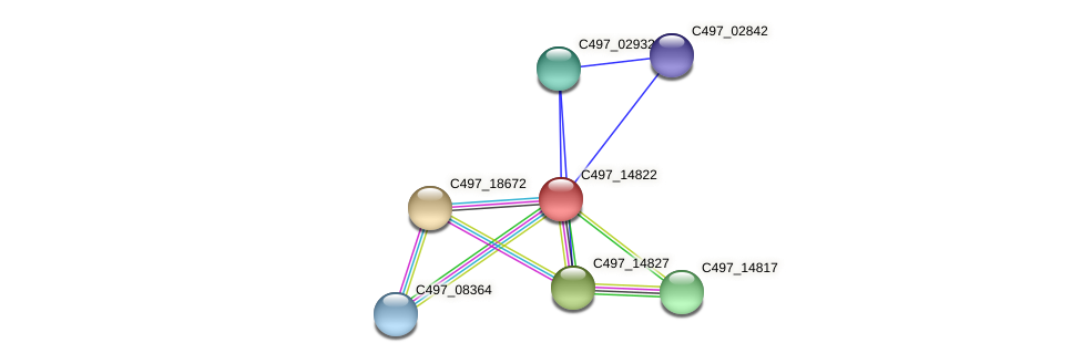 C497_14822 protein (Halalkalicoccus jeotgali) - STRING interaction network