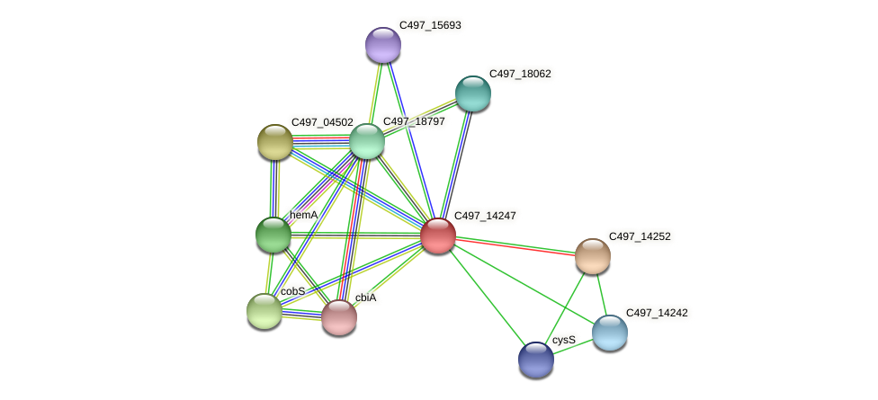 C497_14247 protein (Halalkalicoccus jeotgali) - STRING interaction network
