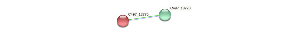 C497_13775 protein (Halalkalicoccus jeotgali) - STRING interaction network