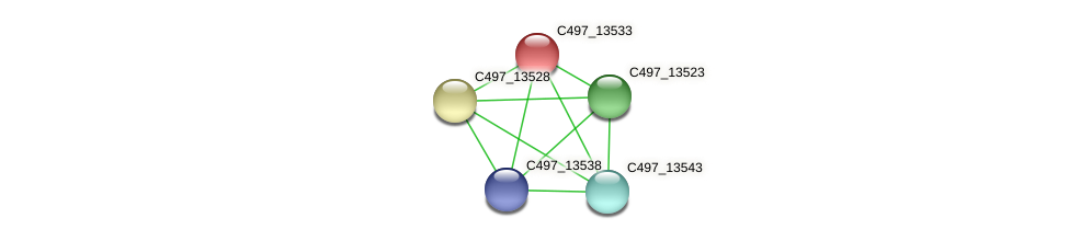 C497_13533 protein (Halalkalicoccus jeotgali) - STRING interaction network