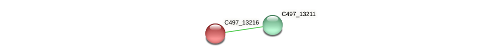 C497_13216 protein (Halalkalicoccus jeotgali) - STRING interaction network