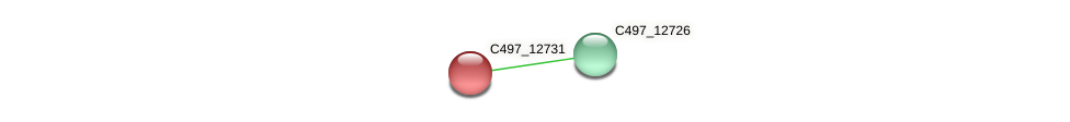 C497_12731 protein (Halalkalicoccus jeotgali) - STRING interaction network