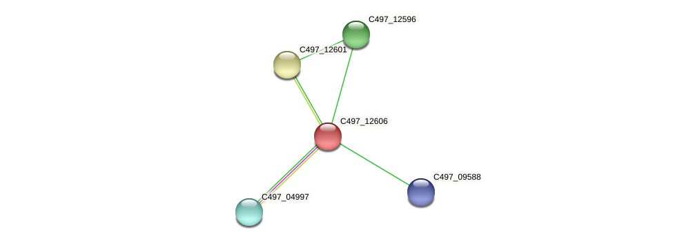 C497_12606 protein (Halalkalicoccus jeotgali) - STRING interaction network