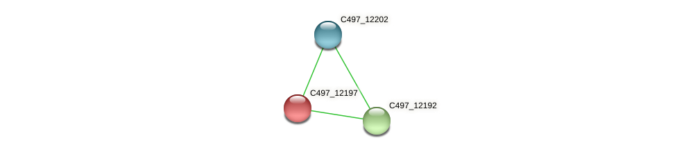 C497_12197 protein (Halalkalicoccus jeotgali) - STRING interaction network