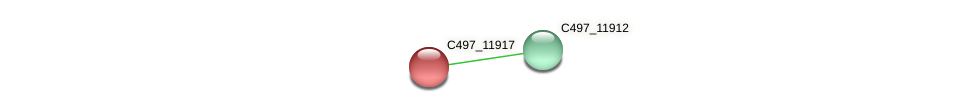 C497_11917 protein (Halalkalicoccus jeotgali) - STRING interaction network
