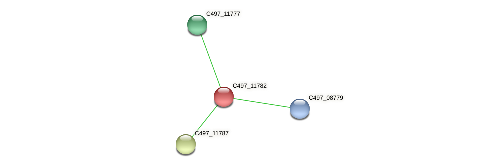 C497_11782 protein (Halalkalicoccus jeotgali) - STRING interaction network