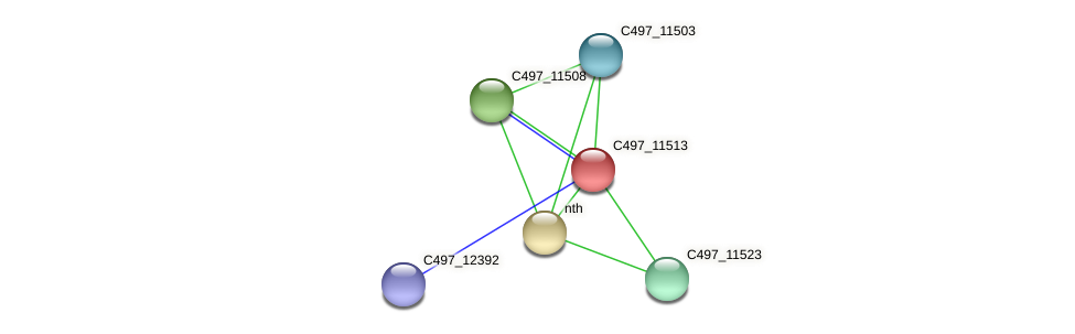 C497_11513 protein (Halalkalicoccus jeotgali) - STRING interaction network