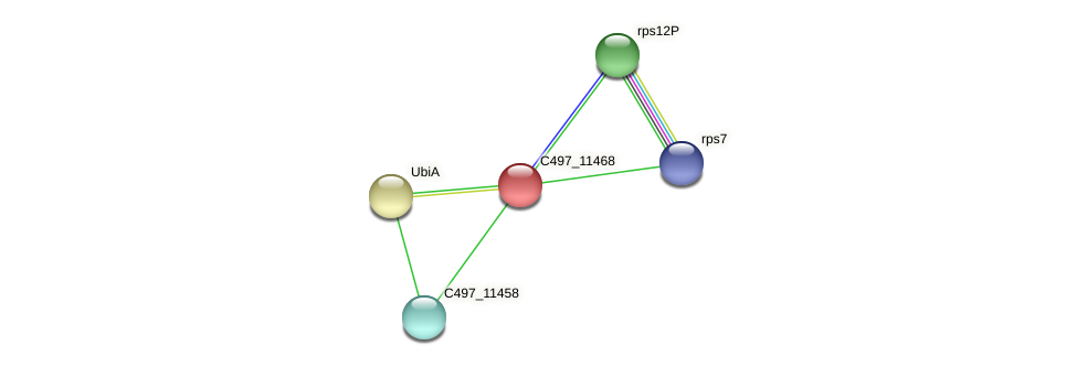 C497_11468 protein (Halalkalicoccus jeotgali) - STRING interaction network