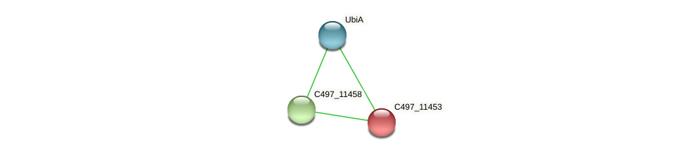 C497_11453 protein (Halalkalicoccus jeotgali) - STRING interaction network