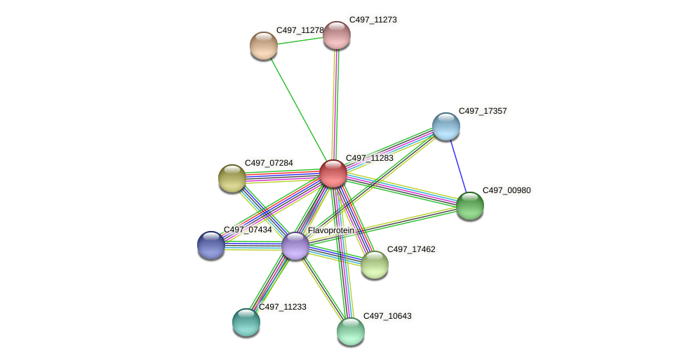C497_11283 protein (Halalkalicoccus jeotgali) - STRING interaction network