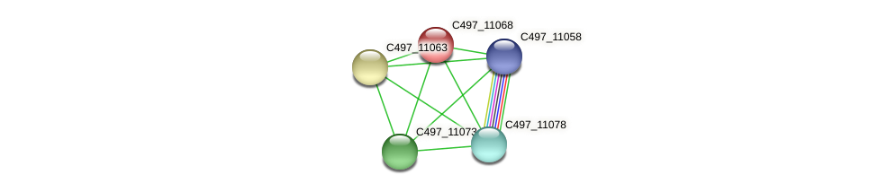C497_11068 protein (Halalkalicoccus jeotgali) - STRING interaction network