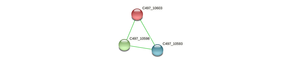 C497_10603 protein (Halalkalicoccus jeotgali) - STRING interaction network