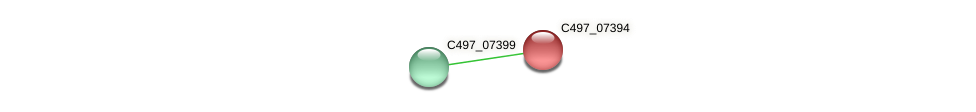 C497_07394 protein (Halalkalicoccus jeotgali) - STRING interaction network