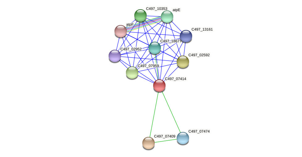 C497_07414 protein (Halalkalicoccus jeotgali) - STRING interaction network